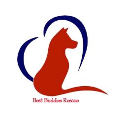 Best Buddies Rescue Inc