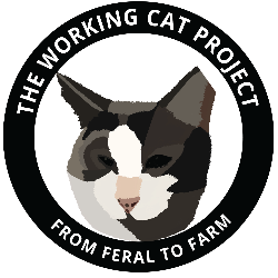 The Working Cat Project
