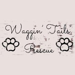 Waggin' Tails Rescue Inc