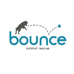 Bounce Animal Rescue