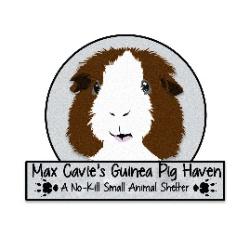 Max Cavie's Guinea Pig Haven