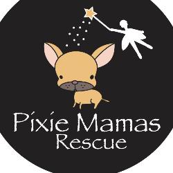 Pixie Mamas Rescue