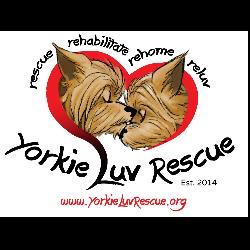 Yorkie Luv Rescue Inc