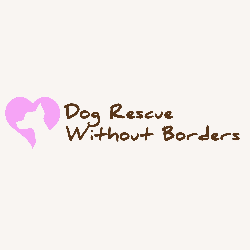 Dog Rescue Without Borders