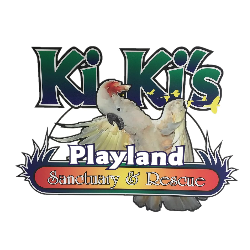Kiki's Playland Parrot Sanctuary and Rescue