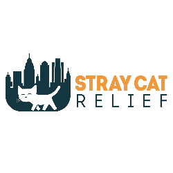 Stray Cat Relief Fund