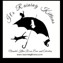 It's Raining Kittens, Inc.