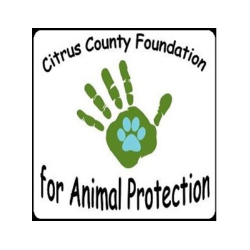 Citrus County Foundation for Animal Protection