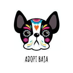 Adopt Baja
