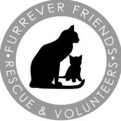 Furrever Friends Rescue & Volunteers, Inc.