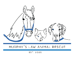 Murphy's Law Animal Rescue