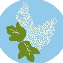 Oak Leaf Animal Rescue