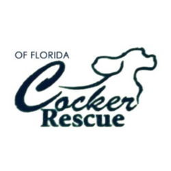 Cocker Rescue of Florida, Inc.