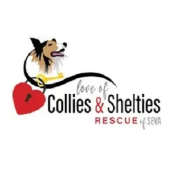 Love of Collies and Shelties Rescue of SEVA