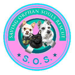 Saving Orphan Souls Rescue