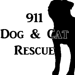 911 Dog and Cat Rescue