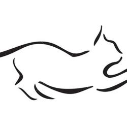 Valley Kitten Nursery and Rescue