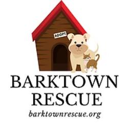 Barktown Rescue