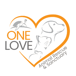 One Love Animal Rescue and Sanctuary