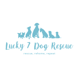 Lucky 7 Dog Rescue
