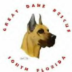 Great Dane Rescue of South Florida