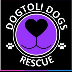 Dogtoli Dogs Rescue Inc.