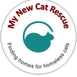 My New Cat Rescue