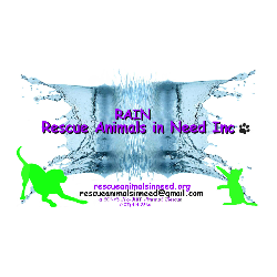 Rescue Animals in Need