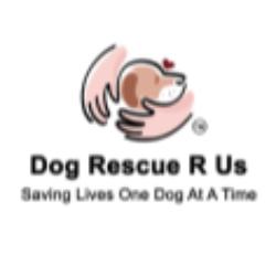 Dog Rescue R Us