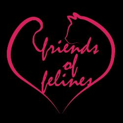 Friends of Felines, Inc