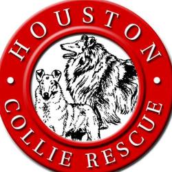 Houston Collie Rescue