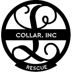 Crazy Old Lady Loving Animal Rescue, Inc.