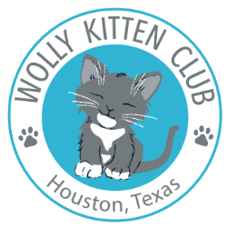 Wolly Kitten Club