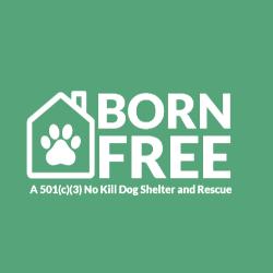 Born Free Pet Shelter Inc