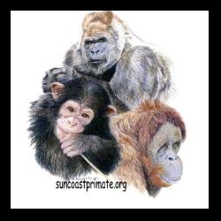 Suncoast Primate Sanctuary Foundation, Inc.