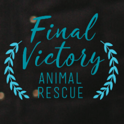 Final Victory Animal Rescue