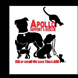 Apollo Support & Rescue