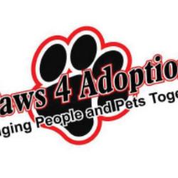 Paws 4Adoption