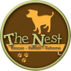 The Nest Animal Rescue and Rehab