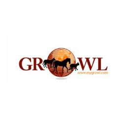 Global Rescue Welfare League