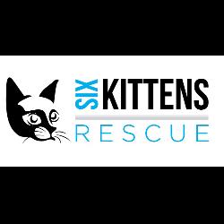 Six Kittens Rescue