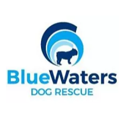 Blue Waters Dog Rescue