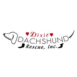 Dixie Dachshund Rescue Inc
