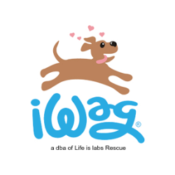 iWag (a DBA of Life is Labs Rescue, Inc.)