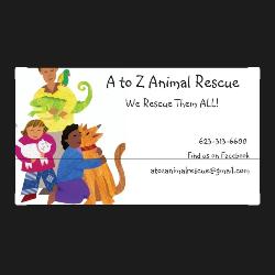 AtoZ Animal Rescue