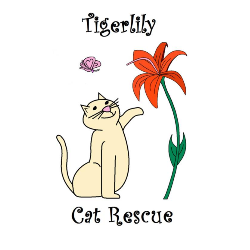 Tigerlily Cat Rescue