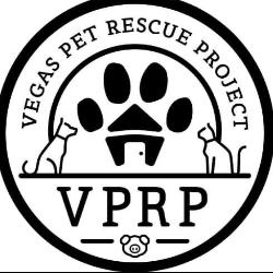 Vegas Pet Rescue Project
