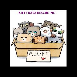 Kitty Kasa Rescue Inc