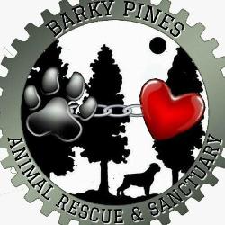Barky Pines Animal Rescue  Sanctuary Inc