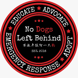 No Dogs Left Behind - Asia Dog Meat Trade Survivors